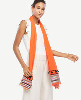 Ann Taylor Mixed Stripe Embroidered Scarf
