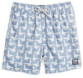 Boy's Tom & Teddy 'Pattern Seagulls' Swim Trunks