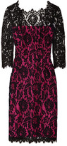 Milly Stella floral-lace dress