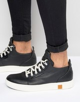Timberland Amherst Sneakers