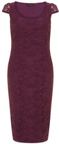 Dorothy Perkins Purple lace pencil dress