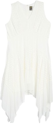 Taylor Sleeveless Embroidered Chiffon Dress (Plus Size)