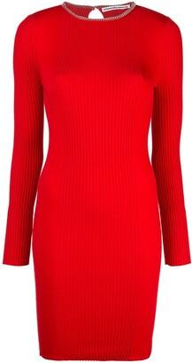 Alexander Wang Ribbed Mini Dress