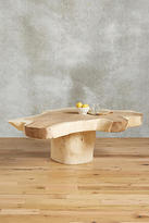 Anthropologie Live-Edge Coffee Table