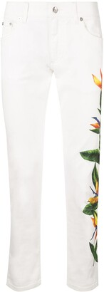 Dolce & Gabbana bird of paradise print jeans