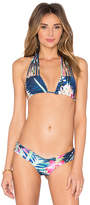 Stone Fox Swim Natasha Top in Blue. - size L (also in )