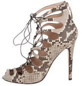 Giambattista Valli Python Lace-Up Pumps