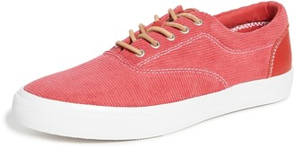 Sperry Cloud CVO Padded Deck Sneakers