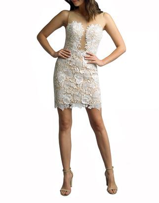 Basix II Lace Illusion Sleeveless Dress