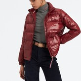 Levi's Short Padded Puffer Jacket with High Neck