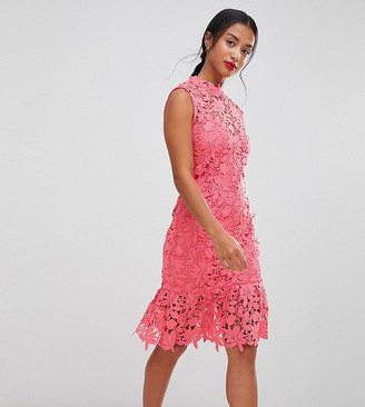 Paper Dolls Petite High Neck Lace Dress with Pephem-Pink