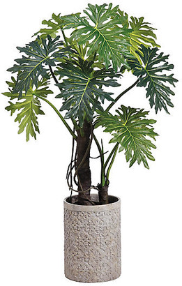 "One Kings Lane 71"" Plume Split Leaf Plant with Planter - Faux - plant, green; planter, concrete gray"