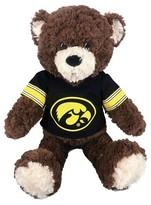 """NCAA Iowa Bear - Multi-Colored (14""""x17"""")"""