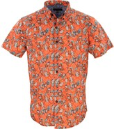 Lords Of Harlech Tim Blossom Canvas Coral