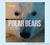 Pottery Barn Kids National Geographic Face to Face with Polar Bears