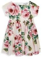 Dolce & Gabbana Toddler's, Little Girl's & Girl's Floral Cotton Dress