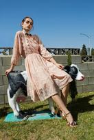 Nasty Gal Carolina Lace Dress