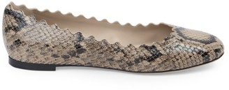 Chloé Lauren Python-Embossed Leather Ballet Flats