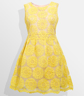 Fred Flare Sunflower Fields Forever Dress