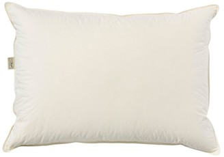 L.L. Bean Organic Cotton Down Pillow