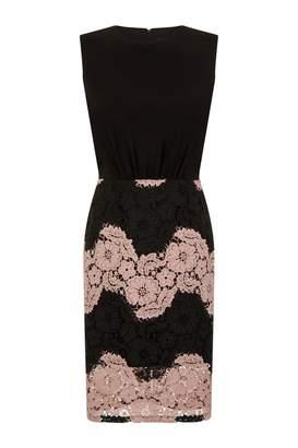 Paper Dolls Outlet Beziers Contrast Lace Dress