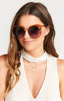 MUMU Perverse Sunglasses ~ JP ~ Glossy Tan Transparent Frames and Purple Gradient Lenses
