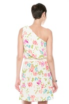 Jaloux Ikat One-Shoulder Dress