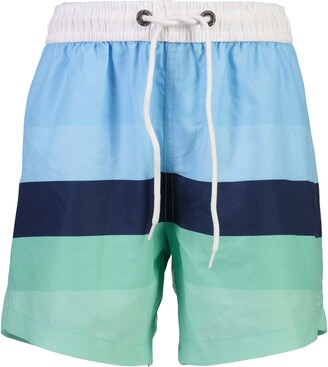 Snapper Rock Stripe Volley Swim Trunks