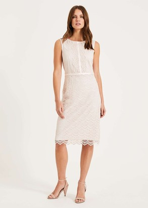 Phase Eight Helga Scallop Lace Dress