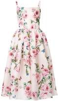 Dolce & Gabbana rose print flared dress