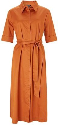 Baukjen Issey Dress In Rust