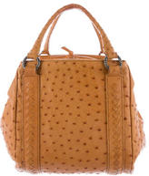 Bottega Veneta Intrecciato-Trimmed Ostrich Bag