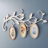 Sweet Vine Oval Frames, Frame + Vine Set