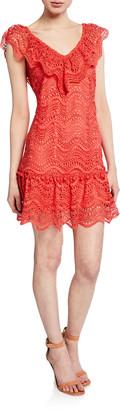 Saylor Fern V-Neck Sleeveless Mini Lace Dress