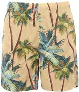 Stussy Beach shorts and pants