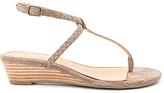 Splendid Jadia Sandal in Taupe. - size 8 (also in )