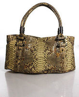 R & Y Augousti R&Y Augousti Brown Python Large Multi-Pocket Rectangular Tote Handbag