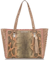 Brahmin Medium Arno Pachanga