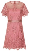 Dorothy Perkins Womens *Girls On Film Dusky Pink Lace Shift Dress, Pink