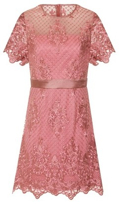 Dorothy Perkins Womens Girls On Film Dusky Pink Lace Shift Dress, Pink