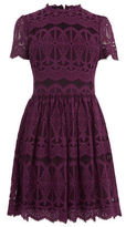 "Oasis LACE SKATER DRESS [span class=""variation_color_heading""]- Burgundy[/span]"