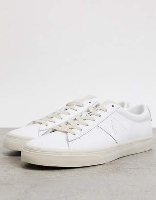 Polo Ralph Lauren sayer leather sneaker in white