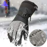 Vector Windproof Water Rebellent Winter Warm Thermal Snow Gloves Skiing Snowboarding Ski Gloves (XL, )