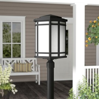 Chianna 1-Light LED Lantern Head Darby Home Co Finish: Vintage Black, Bulb Type: Incandescent