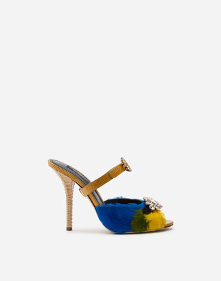 Dolce & Gabbana Mules In Crocodile Skin Sides And Feather With Jewel Embroidery