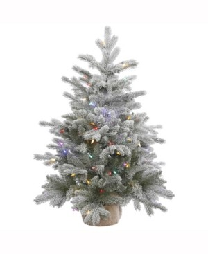Vickerman 36 inch Frosted Sable Pine Artificial Christmas Tree With 100 Multi-Colored Led Lights