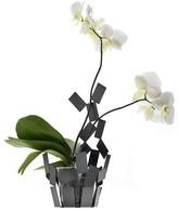 """Alessi Stanza Scirocco"""" Vase Cover, Black"""