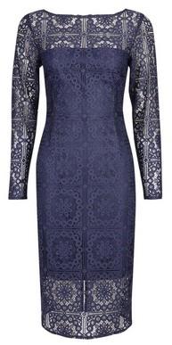Dorothy Perkins Womens Navy Slash Neck Lace Bodycon Dress