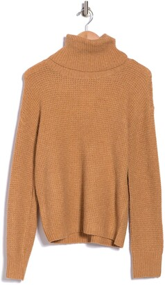 Abound Thermal Turtleneck Sweater
