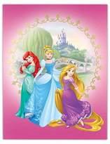 Disney Princess Foil Embellished Canvas 14x18